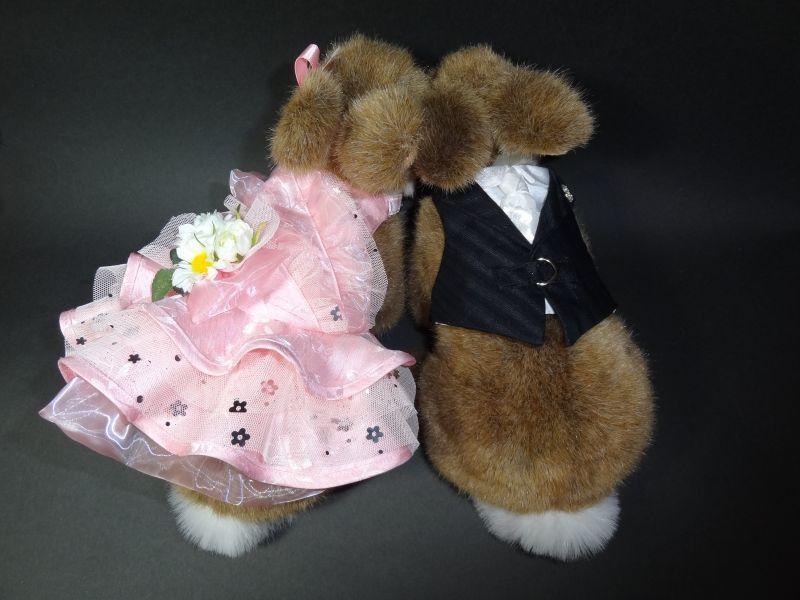 うさフェスタ 2016 桜祭